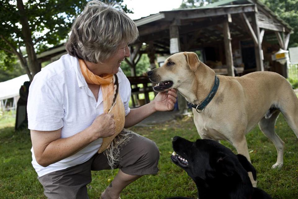 Animal Whisperer Fosters Communication Between Pets Befuddled Humans The Boston Globe